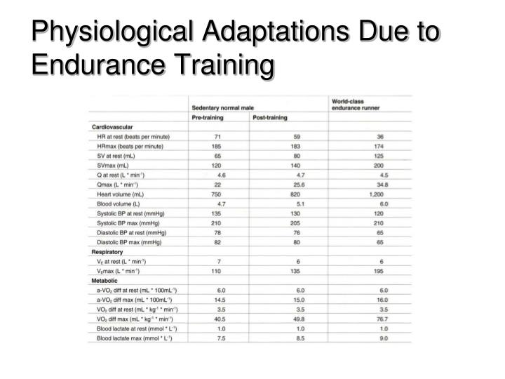 Physiological Adaptations Due to Endurance Training