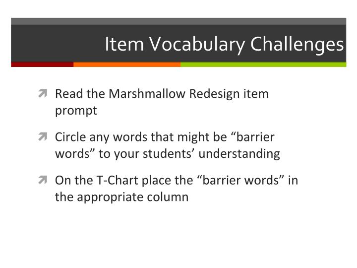 Item Vocabulary Challenges