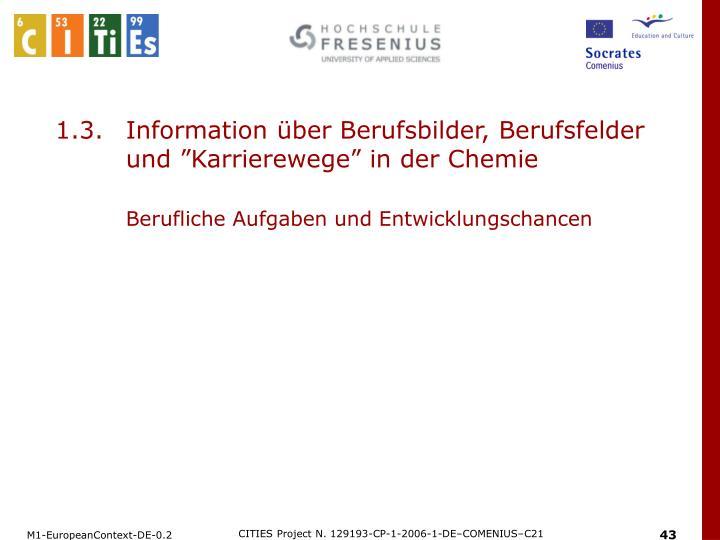 """1.3.Information über Berufsbilder, Berufsfelder und """"Karrierewege"""" in der Chemie"""
