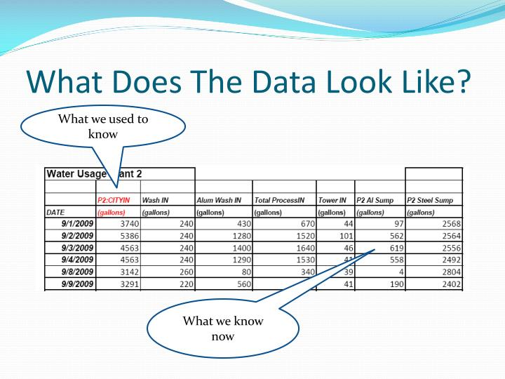 What Does The Data Look Like?