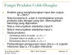 fungsi produksi cobb douglas