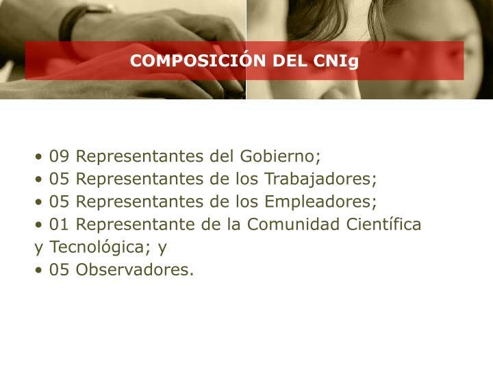 COMPOSICIÓN DEL CNIg