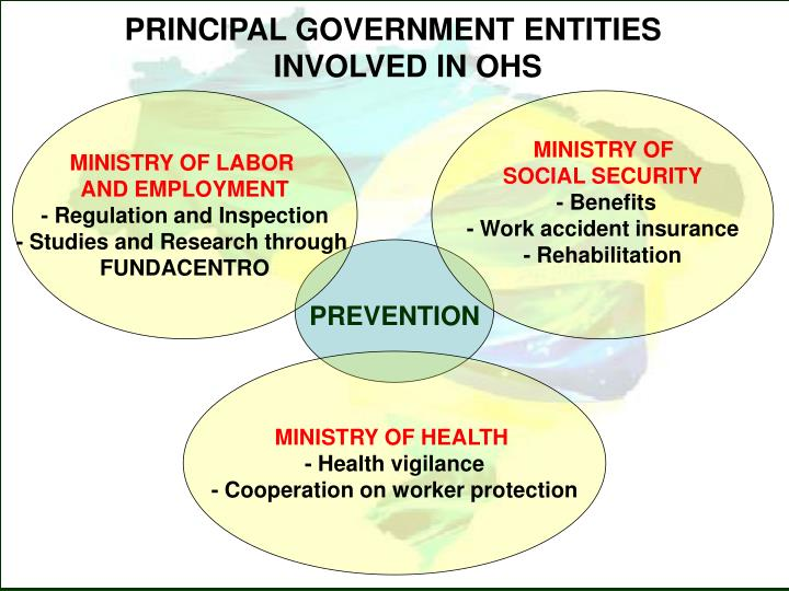 PRINCIPAL GOVERNMENT ENTITIES INVOLVED IN OHS
