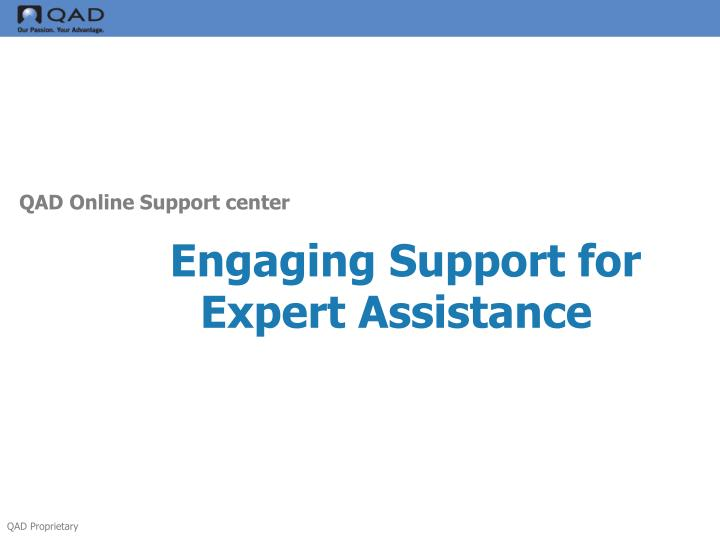 Engaging Support for Expert Assistance