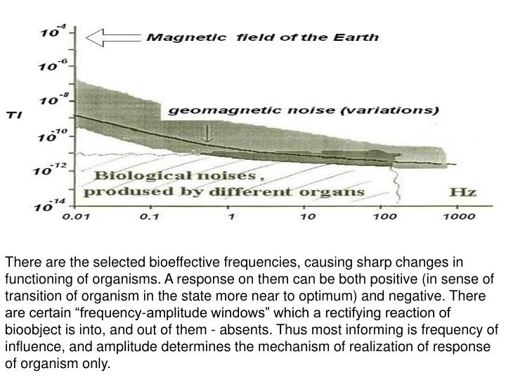 """There are the selected bioeffective frequencies, causing sharp changes in functioning of organisms. A response on them can be both positive (in sense of transition of organism in the state more near to optimum) and negative. There are certain """"frequency-amplitude windows"""" which a rectifying reaction of bioobject is into, and out of them - absents. Thus most informing is frequency of influence, and amplitude determines the mechanism of realization of response of organism only."""