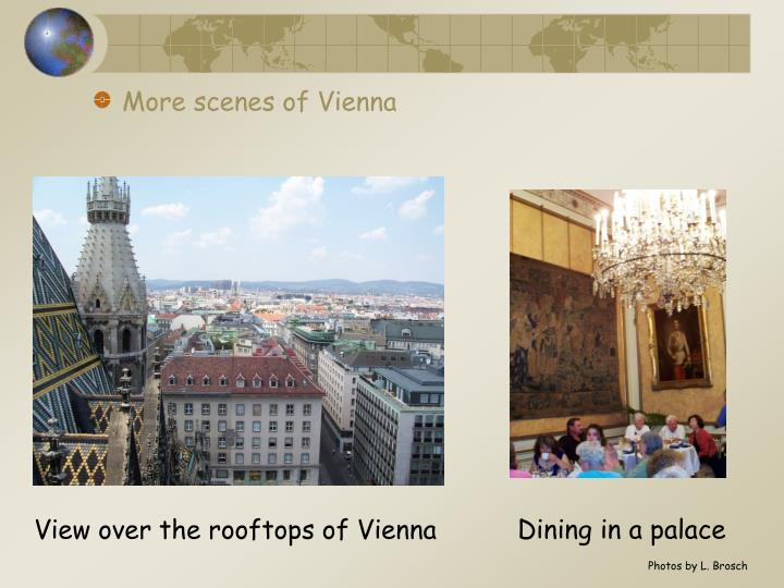 More scenes of Vienna