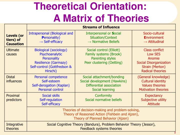 Theoretical Orientation: