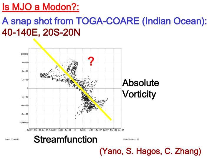 Is MJO a Modon?: