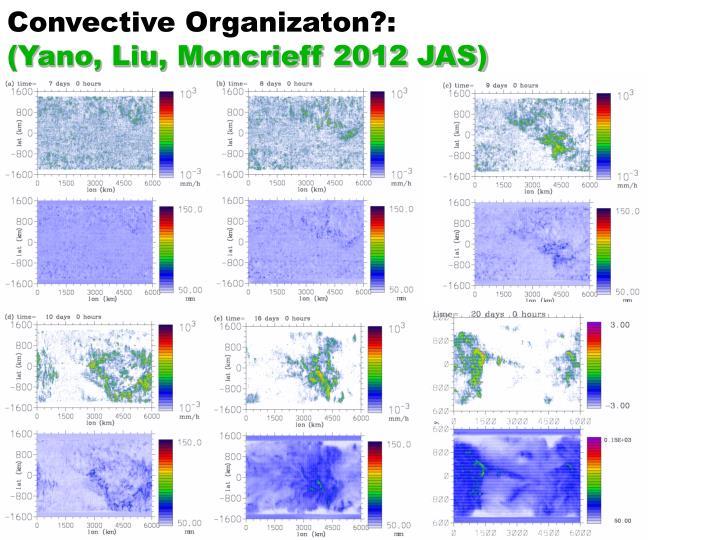 Convective Organizaton?: