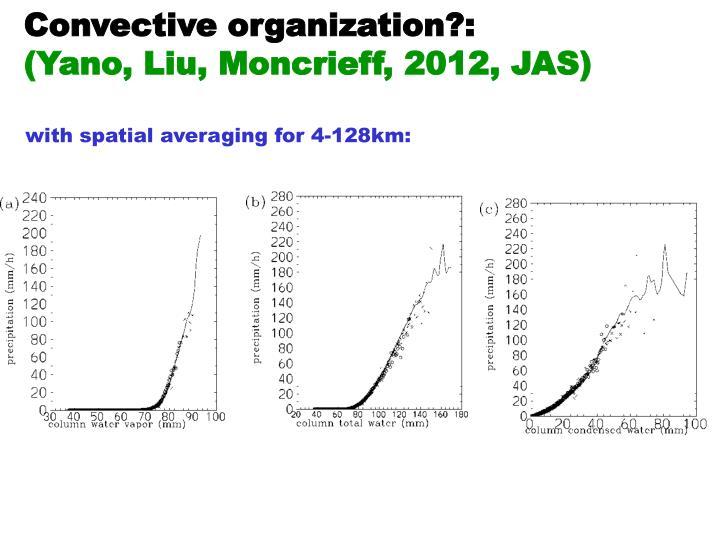 Convective organization?: