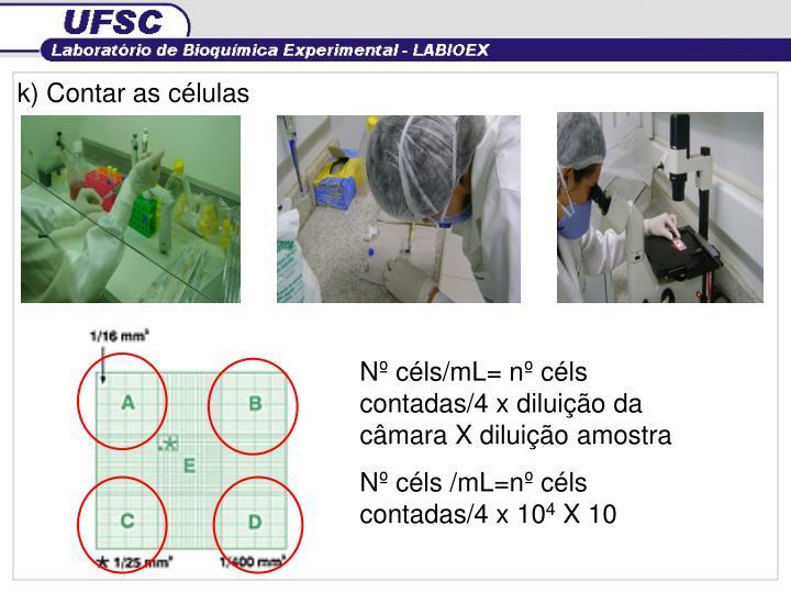 k) Contar as células