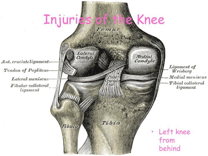 Injuries of the knee