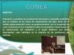 conea1