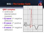 ecg the cardiac cycle2