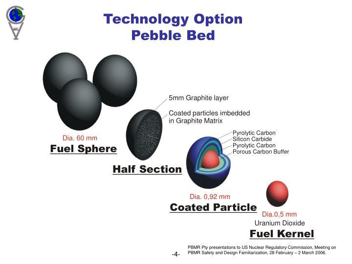 Technology Option