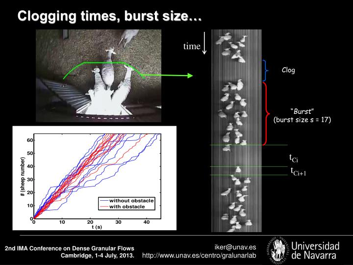 Clogging times, burst size…