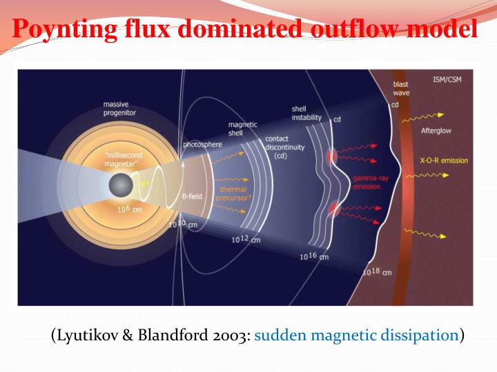 Poynting flux dominated outflow model