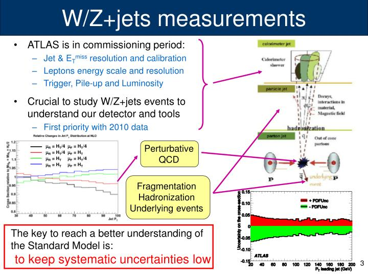 W z jets measurements