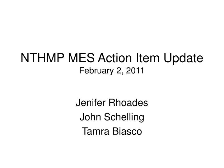 Nthmp mes action item update february 2 2011