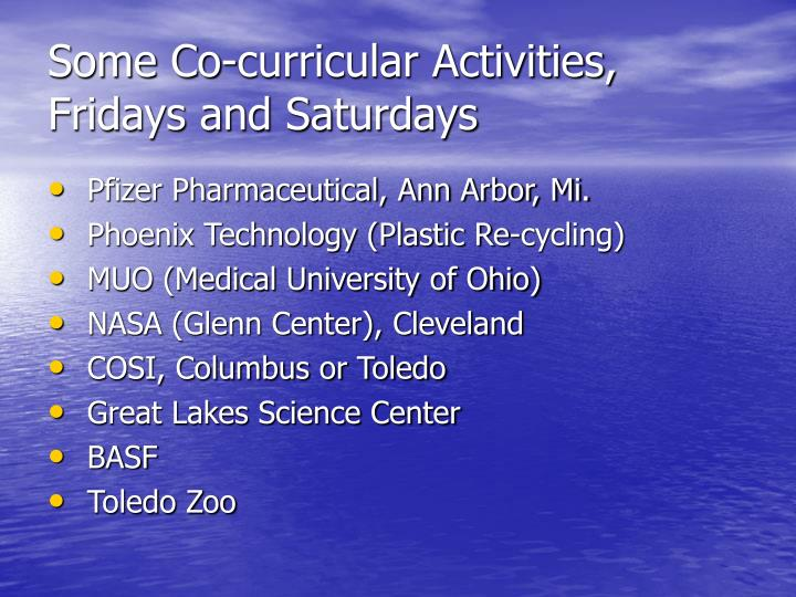 Some Co-curricular Activities, Fridays and Saturdays