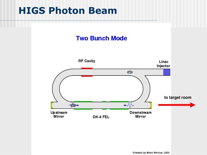 HIGS Photon Beam