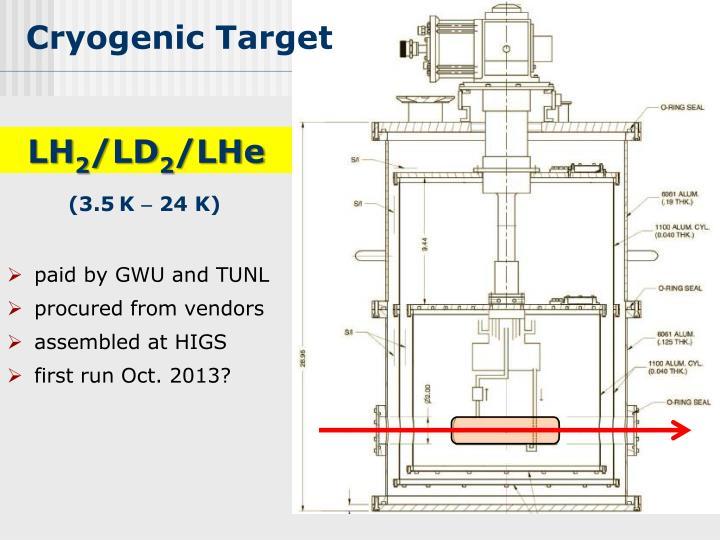 Cryogenic Target