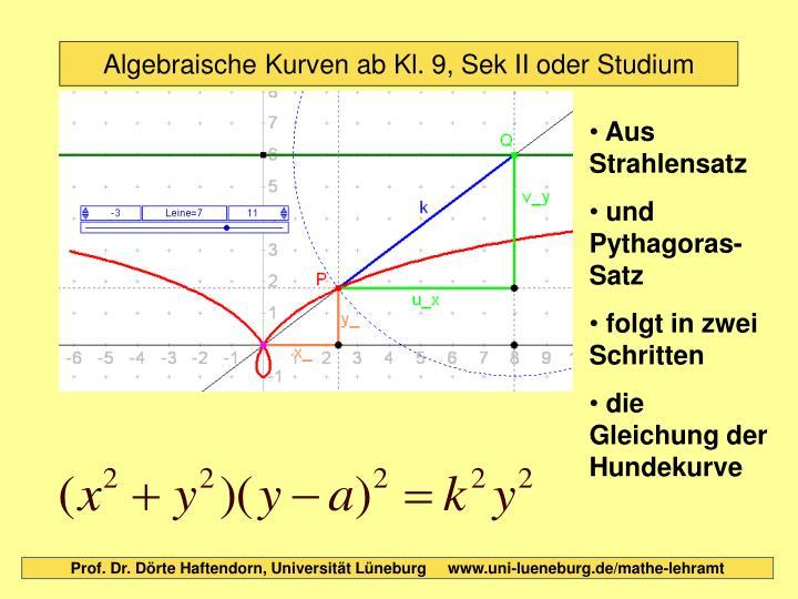 Algebraische Kurven ab Kl. 9, Sek II oder Studium