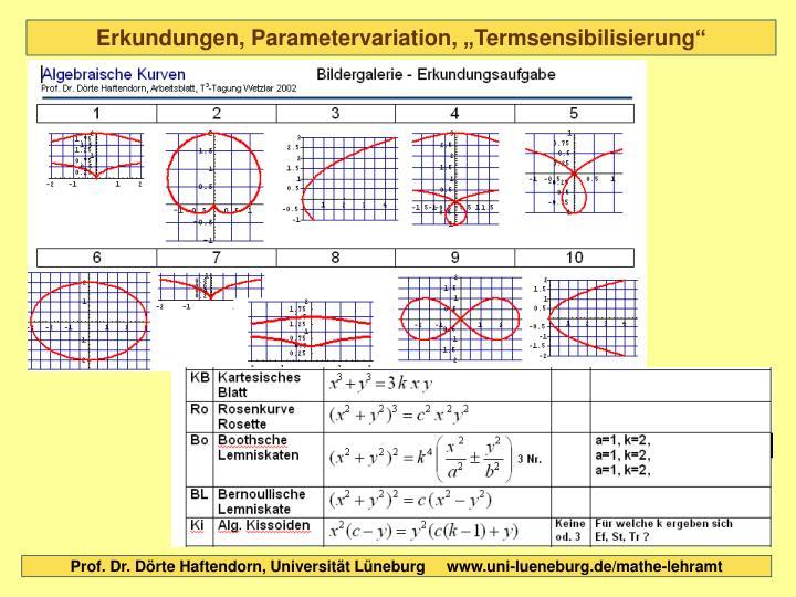 """Erkundungen, Parametervariation, """"Termsensibilisierung"""""""