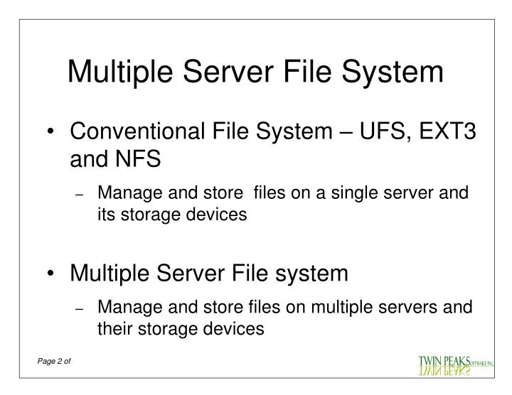 Multiple server file system