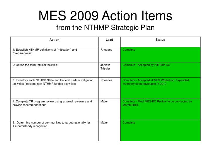 MES 2009 Action Items