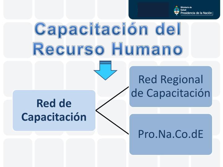 Capacitación del Recurso Humano
