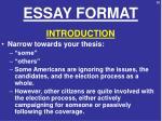 essay format1