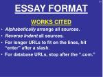 essay format12