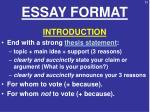 essay format2
