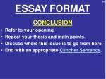 essay format9