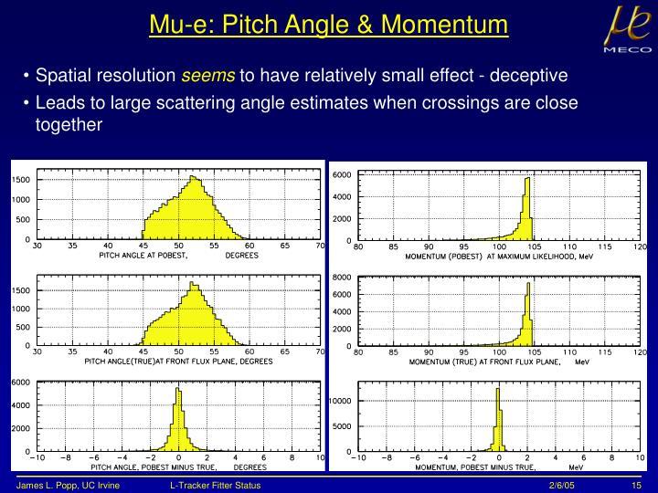 Mu-e: Pitch Angle & Momentum