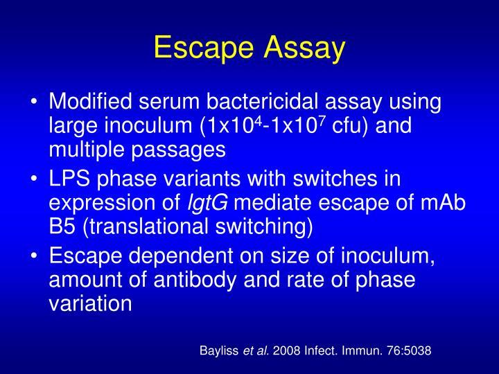 Escape Assay