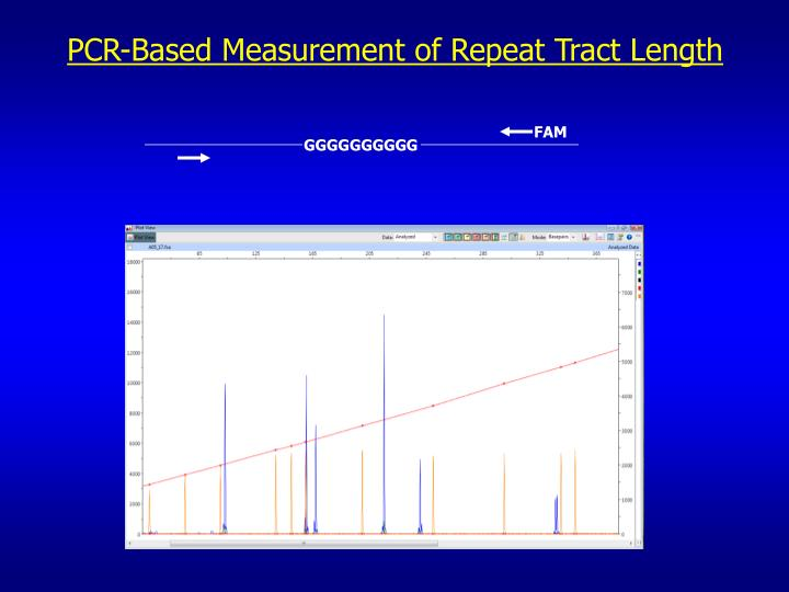 PCR-Based Measurement of Repeat Tract Length