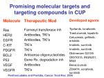 promising molecular targets and targeting compounds in cup