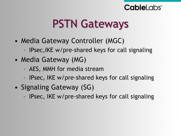 PSTN Gateways