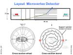 layout microvertex detector