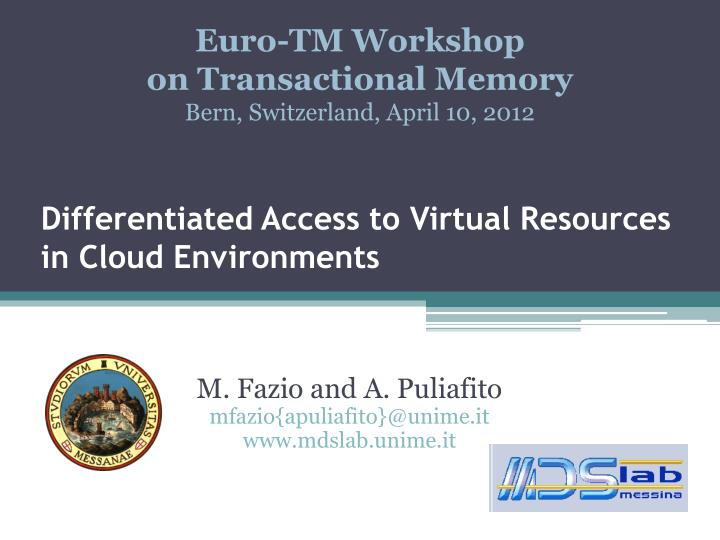 Differentiated access to virtual resources in cloud environments