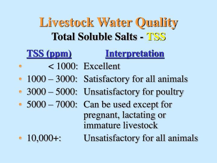 Livestock Water Quality