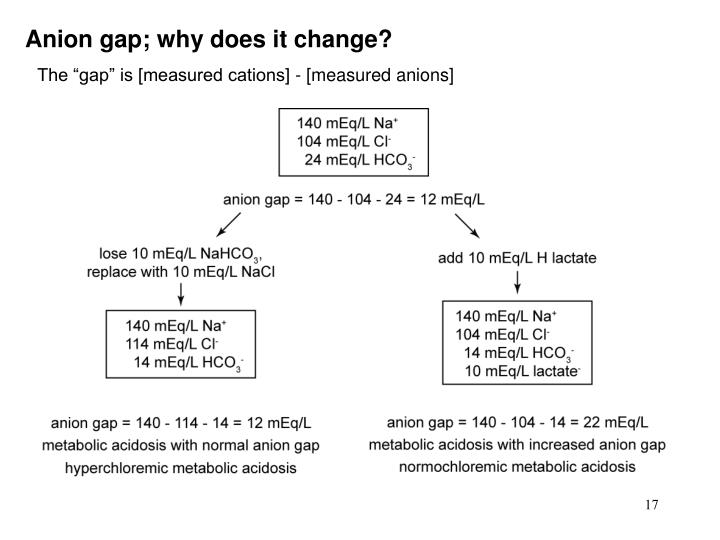 Anion gap; why does it change?