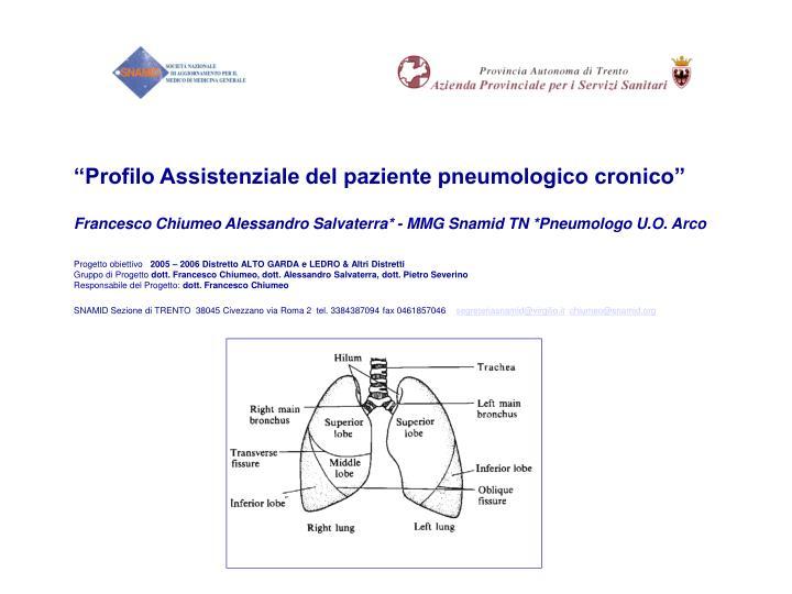 """""""Profilo Assistenziale del paziente pneumologico cronico"""""""