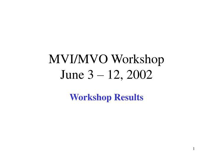 mvi mvo workshop june 3 12 2002 n.