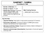 gamfinet gambia formalized in 1999
