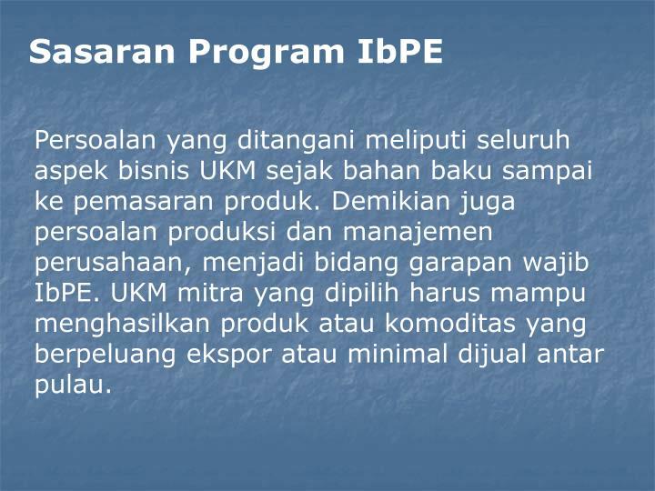 Sasaran Program IbPE