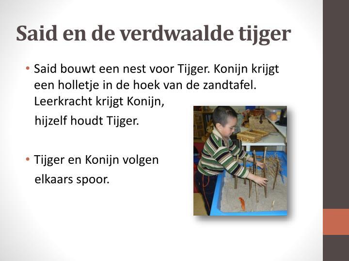 Said en de verdwaalde tijger