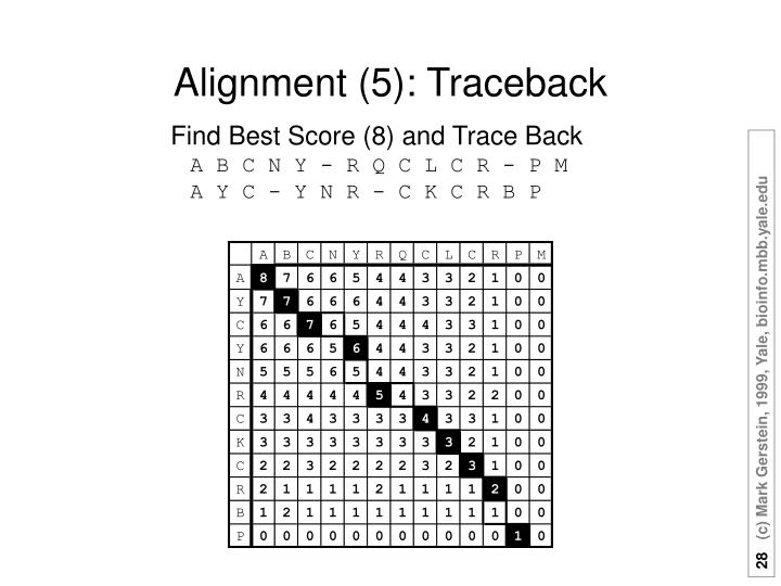 Alignment (5): Traceback